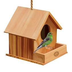 Bird House Paintable Watching Made Easy Attracts Small Finch