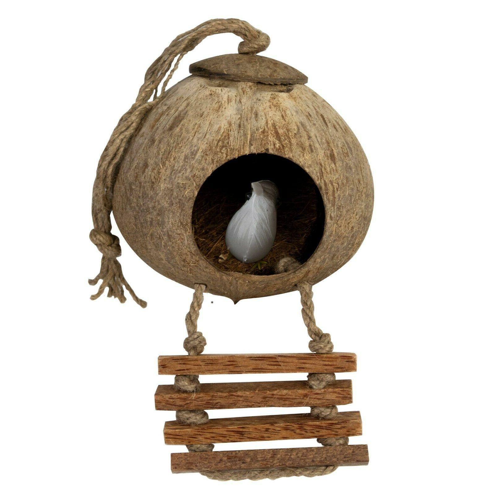 Coconut Bird w Ladder | Hanging for