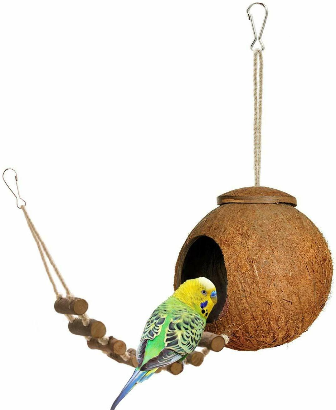 nice coconut house with ladder for birds