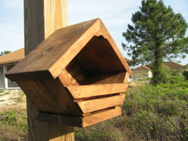 Mourning Dove, Box Birdhouse Stained Day SALE