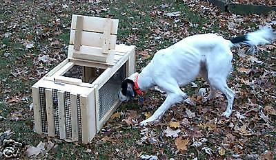 pheasant cage dog training two units