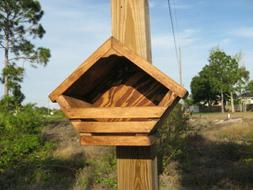 Mourning Dove, Robin, Phoebe,Nest Box Birdhouse Stained Labo