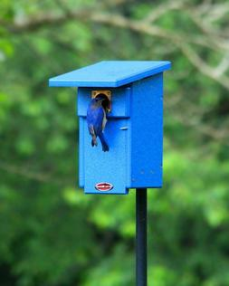 Recycled Bluebird Nest Box and Pole Package Bird House Nestb