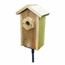 Stovall Products SP2HV Window Viewing Nest Box with Suction